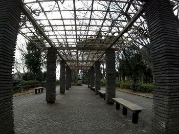 東高根森林公園4.jpg